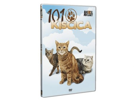 101 kiscica (1DVD) (Animal Planet) (slim tokos)
