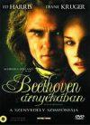 Beethoven árnyékában (1DVD) /használt, karcos/